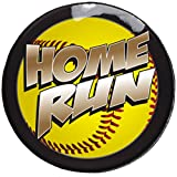 Pro-Tuff Decals Award Decals for Softball, Softball Award Decals in Full Color 100 Softball Award Stickers (Softball Home Run)