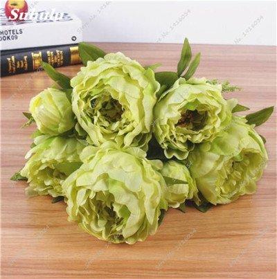 Vente Hot 10 pièces/sac Graines Pivoine Graines de fleurs Jardin et plantes d'intérieur en pot Bonsai Pivoine Graines jardin Facile à cultiver 10