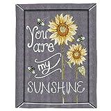 SHHSGZ Eres mi Girasol de Sol Adultos y Niños Franela Mantas Impreso Manta Bedding Manta De Sofá Mantas para Cama Oficina Casa Viaje Mantas Tapiz Colgar en la Pared-XL (180X240CM)