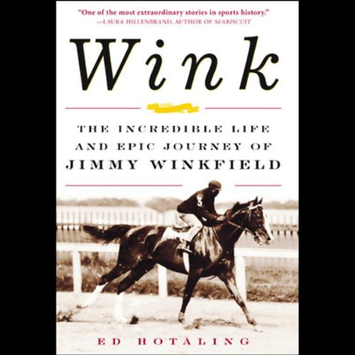 Wink audiobook cover art
