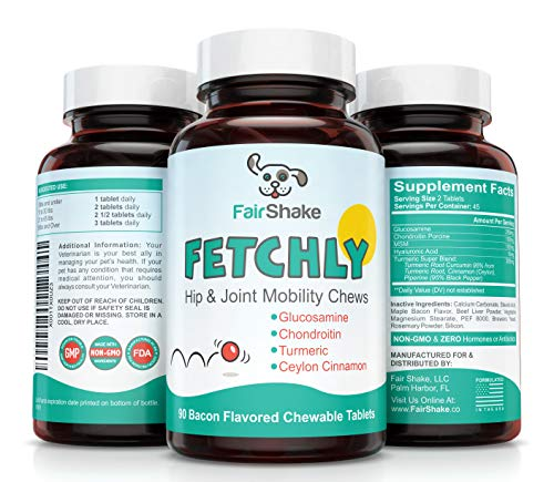 Best Joint Supplement For Senior Dogs - Glucosamine, Chondroitin, MSM & Turmeric - Supports Healthy Hip & Joints, Fights Inflammation & Arthritis Pain Relief FETCHLY #1 Chews Small & Large Dog Breeds