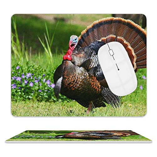 Leather Mouse Pad,No Deformation Mouse Mat with Stitched Edge Rubber Base Washable Mouse Pads for Working and Gaming 8'10' (Bird Turkey Feathers)
