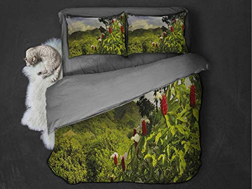 Forest 100% Washed Microfiber Bed Set Rural Scenery Costa Rica Countryside Greenery Tropic Accents Botanical Super Soft and Breathable Duvet Cover (Twin) Green Red Violet Blue