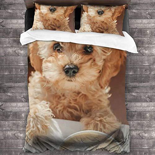 Set di biancheria da letto per letto queen size con 2 federe per cuscini, 3 pezzi, 218,4 x 177,8 cm