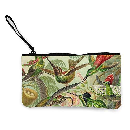 Münzgeldbörse Vintage Kolibri Vogel tropisch kleine kompakte Leinwand Brieftasche Reißverschlusstasche Bleistift Stift Fall Clutch Pouc
