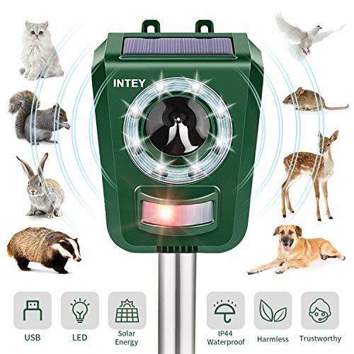 INTEY Katzenschreck Tiervertreiber Ultraschall wasserdichte Einstellbarem Solar Batterie 5 Modus Hochleistung Breite,Tierabwehr Wasserdicht, mit Blitz,Für Katzen,Vögel, Waschbären,Hunde,Schädlinge