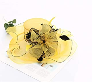 Womens Ladies Organza Church Wide Brim Tea Party Wedding Hat Fancy Kentucky Derby Fascinator Cap
