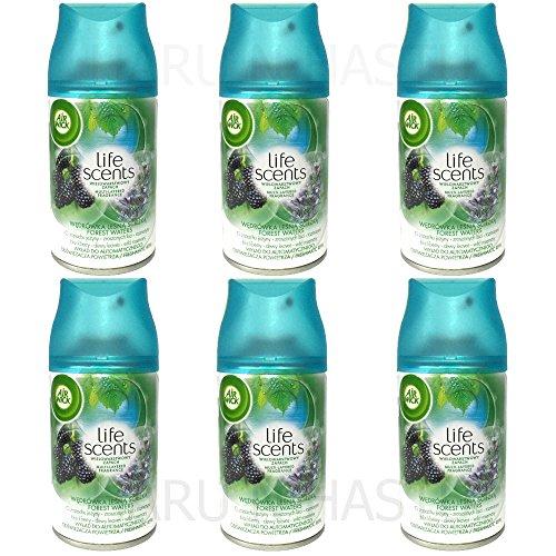 Airwick Nachfüller Forest Waters für Freshmatic Max - 6er Pack (6 x 250 ml)