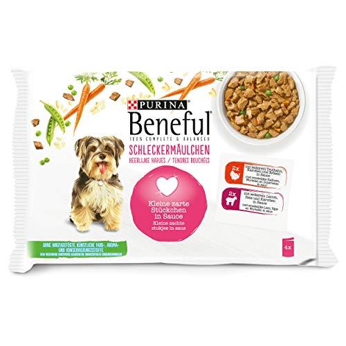 PURINA BENEFUL Schleckermäulchen Hundefutter nass in Sauce, mit Truthahn & Lamm, 10er Pack (10 x 4 Beutel à 100g)