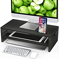 LORYERGO LEMS09 2-Tier Monitor Stand Riser with Cellphone Holder & Storage Space