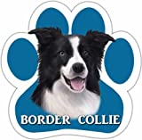 Border Collie Car Magnet With Unique Paw Shaped Design Measures 5.2 by 5.2