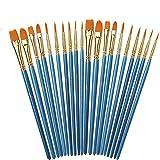 Juego de pinceles de pintura Pumprout, 20 piezas de pinceles de nailon para el cabello, kits de pintura profesional de artista de pintura acrílica al óleo