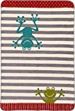 Unbekannt Richter Textilien Bio Babydecke Baumwolle grün/grau Größe 75x100 cm