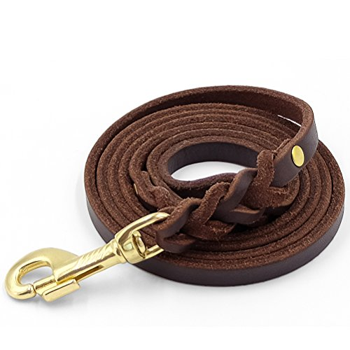 """Fairwin Leather Dog Leash 6 Foot - Braided Heavy Duty Training Leash for Large Medium Small Dogs Running and Walking (S:Width:1/2"""", Brown)"""
