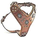 Bestia Harnais en cuir pour gros chien aztèque avec rivets décoratifs 2 tons. Fermeture Éclair. Rembourrage en mousse et cuir fait main en Europe.