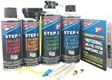 Best Fuel System Cleaners - Berryman Products 2640 4-Step Professional Air & Fuel Review