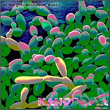 Midnight Mushroom Music