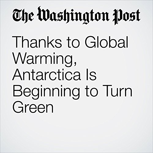Thanks to Global Warming, Antarctica Is Beginning to Turn Green audiobook cover art