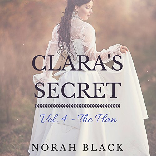 The Plan audiobook cover art