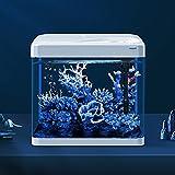 Aquarium-Starter-Kit-Aquarium, Wasserfreies Glas Ökologisches Aquarium, Einschließlich...