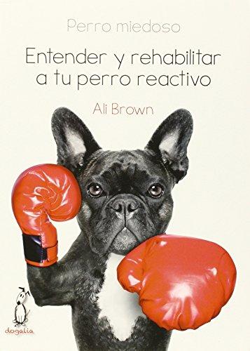 Perro miedoso: Entender y rehabilitar a tu perro reactivo