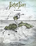 Peter Pan: Illustrated by John Fisher