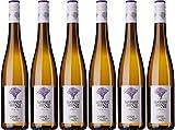 am Nil Sauvignon Blanc 2018 Trocken (6 x 0.75 l)