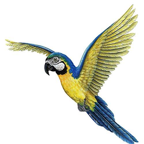 ARA Sticker mural par les parois du sauvage – Plus d'oiseaux et animaux de la jungle Stickers muraux Disponible. Artiste Drawn illustrations – amovible. Créez de Surprenantes avec ces très détaillées de haute qualité, Stickers
