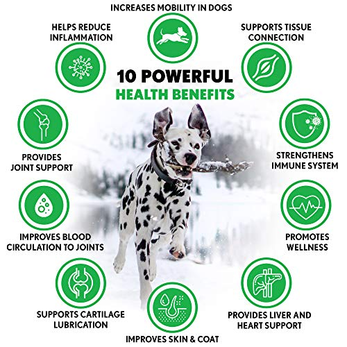 WILDPAW Organic Hemp Treats For Hip And Joint Support