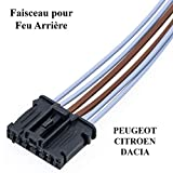 Kit Réparation Câble Faisceau de Câblage Fiche Électrique Prise de Connectique Connecteur Adaptateur Platine Porte Ampoules Feu Feux Arriere GAUCHE ou DROIT 206 207 307 C3 Logan 1606248780 6001551441