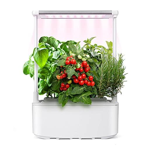 Kwasyo Sistema de Cultivo Hidropónico, Kit de Inicio de Jardín de Hierbas para Interiores con luz de Crecimiento LED, Smart Garden con Vermiculita, Maceta de Jardín Inteligente para Cocina casera