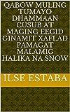 qabow muling tumayo dhammaan cusub at maging eegid ginamit xaflad pamagat malamig halika na snow (Italian Edition)