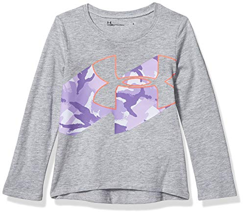 Under Armour Baby Girls' Toddler Long Sleeve Graphic Tee, Moderate Gray H19, 2T