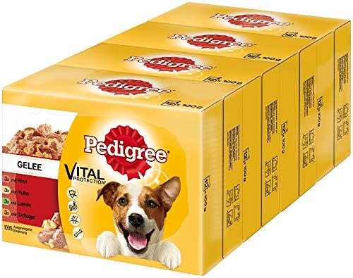 Pedigree Vital Protection Hundenassfutter im Beutel – Hundefutter in Gelee mit Rind, Huhn, Lamm & Geflügel – 48 x 100g Großpackung