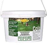 Cola Adhesiva césped artificial 2,2 Kg