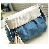 AKSSWEETズック製バック レディース バッグ タッセル付き おしゃれ かわいい ななめ掛け ミニ ショルダー バッグ ミニバッグ (カラー1)