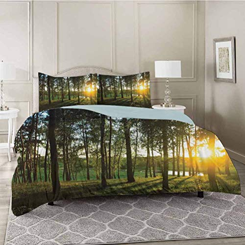 YUAZHOQI Forest 3 Pieces Bedding Duvet Cover Set Sunset in The Woods Theme Autumn and River Comes into View at Distances Soft Microfiber Bedding,Wrinkle, Fade, Stain Resistant