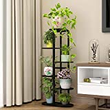 Multi Tier Iron Plant Stand - Indoor 6 Layer Tiered Wrought Iron Flower Pot Stand Metal Plant Display Rack Shelf Multi-Tiered Plant Holder for Living Room Corner Patio Balcony Court Garden (Black)