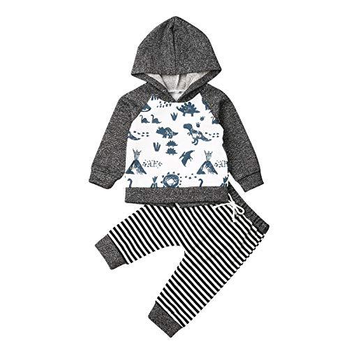 Bebé Ropa 2 Piezas Conjunto de Recién Nacido Traje Chándal Top Sudadera de Manga Larga con Capucha + Pantalones Largos para Niños Pequeños Otoño e Invierno