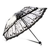 Paraguas Transparente para Mujer, Plegable, para Mujer, para Exteriores, Transparente, de Negocios, para Lluvia, con Estampado de Flor de Cerezo y Sakura (Color: El Mago de Oz)