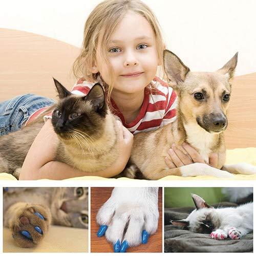 DOG Accessori per animali domestici 20Pcs Animali domestici morbidi Gatti per cani Gattino Zampa Artigli Controlli tappi per unghie Coperchi Accessori per animali domestici - Arancione M