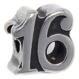 GemStorm Stainless Steel Number 16 Charm Bead Fits Pandora Bracelet for European Snake Chain Bracelets