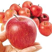 国華園 青森産 ちびふじ 10㎏ 1組 りんご