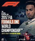 モータースポーツ 2017 FIA F1 世界選手権...