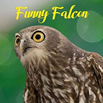 Funny Falcon