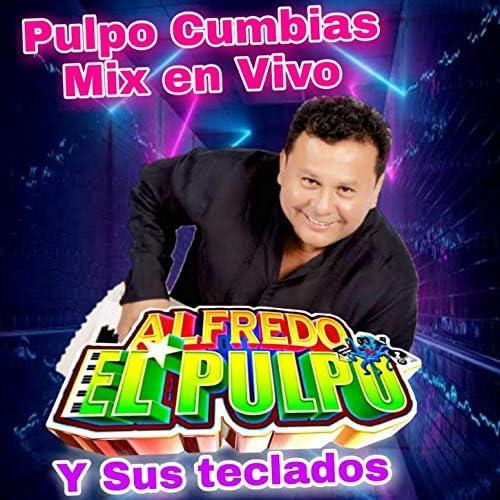 Pulpo Cumbias Mix (En Vivo) de Alfredo El Pulpo Y Sus ...