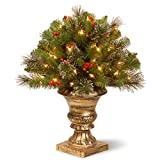 National Tree 24 Inch Crestwood Spruce Porch Bush with Silver Bristle, Cones,...