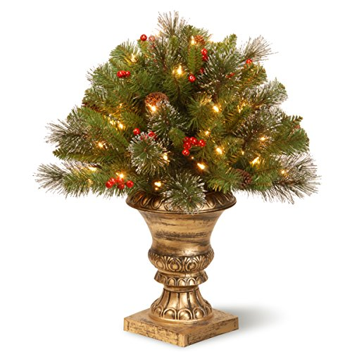 National Tree 24 Inch Crestwood Spruce Porch Bush with Silver Bristle, Cones, Red Berries and 35 Clear Lights in Decorative Urn (CW7-300-24P)
