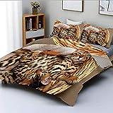 Juego de funda nórdica, pequeños gatos de Bengala en canasta, adorables gatitos de raza pura, juego de cama decorativo felino doméstico de 3 piezas con 2 fundas de almohada, marrón, marrón claro, beig