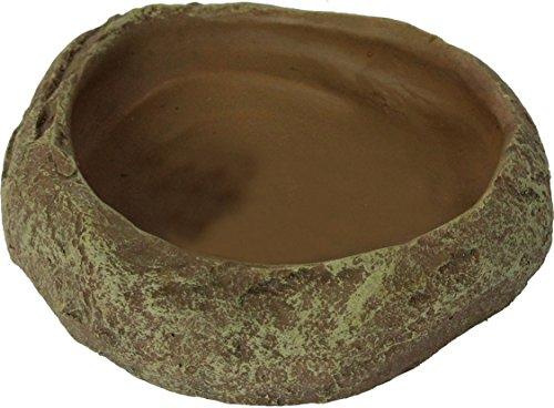 Reptiles Planet Repti Dish - Roca de decoración para Reptiles, 12 x 3 x 11,5 cm, Talla M